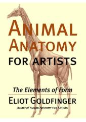 Animal Anatomy for Artists : The Elements of Form