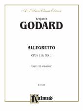 Allegretto for Flute and Piano, Opus 116 : For Flute Solo